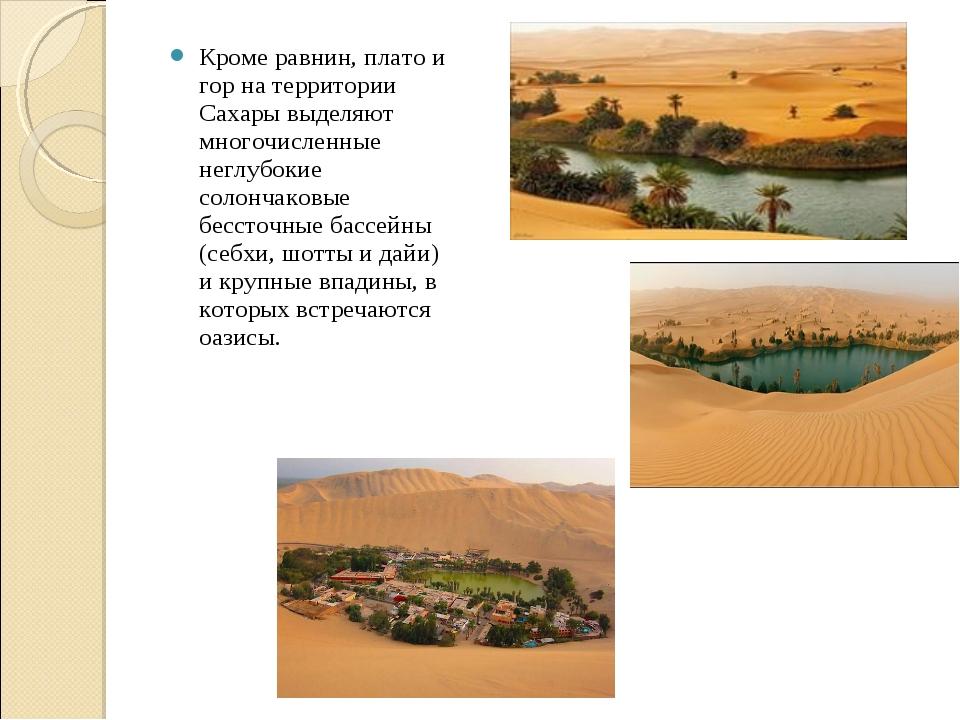 Кроме равнин, плато и гор на территории Сахары выделяют многочисленные неглуб...