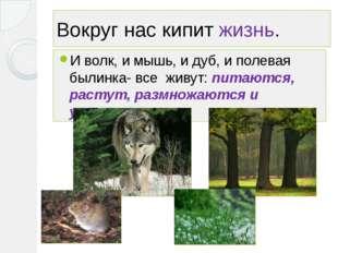 Вокруг нас кипит жизнь. И волк, и мышь, и дуб, и полевая былинка- все живут: