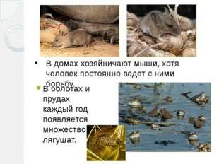 В болотах и прудах каждый год появляется множество лягушат. В домах хозяйнича