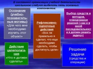В системной организации учебной деятельности школьников следует выделить пять