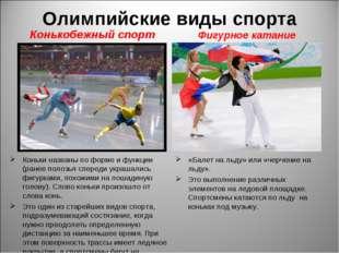 Олимпийские виды спорта Конькобежный спорт Коньки названы по форме и функции