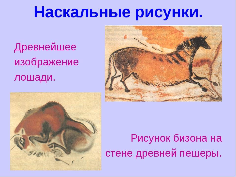 Наскальные рисунки. Древнейшее изображение лошади. Рисунок бизона на стене др...
