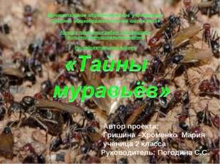 Автор проекта: Гришина –Хроменко Мария ученица 2 класса Руководитель: Погоди