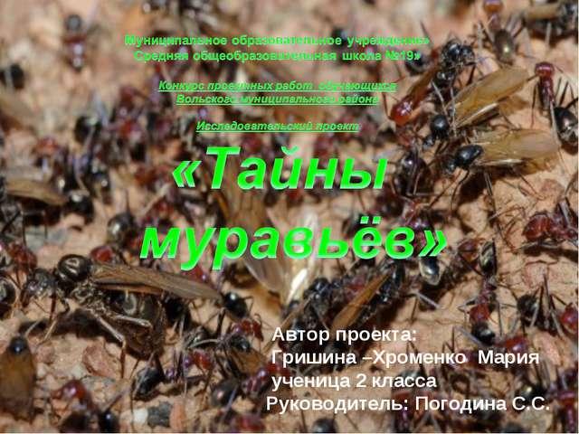 Автор проекта: Гришина –Хроменко Мария ученица 2 класса Руководитель: Погоди...