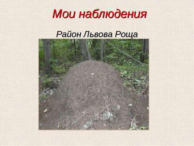 Мои наблюдения Район Львова Роща