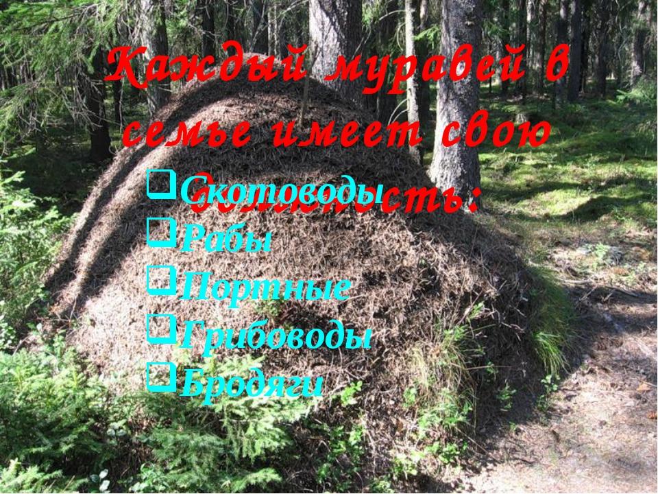 Каждый муравей в семье имеет свою должность: Скотоводы Рабы Портные Грибоводы...