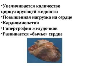 Увеличивается количество циркулирующей жидкости Повышенная нагрузка на сердце