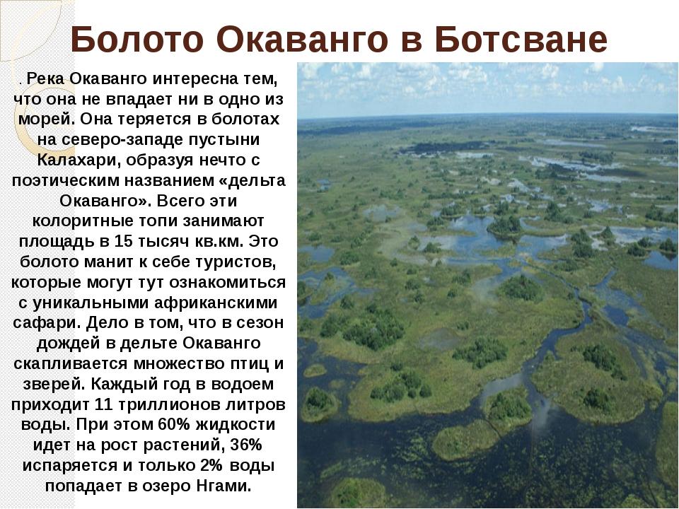 рекомендовано болота россии сообщение появлением