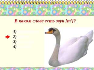 В каком слове есть звук [т']? перетащил лебедь местный менуэт