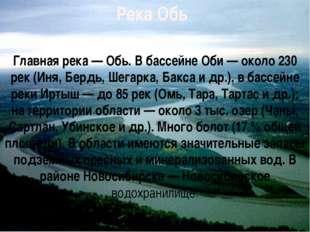 Река Обь Главная река — Обь. В бассейне Оби — около 230 рек (Иня, Бердь, Шега