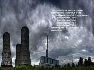 ОАО Новосибирскэнерго— крупная энергетическая компания, в состав генерирующи