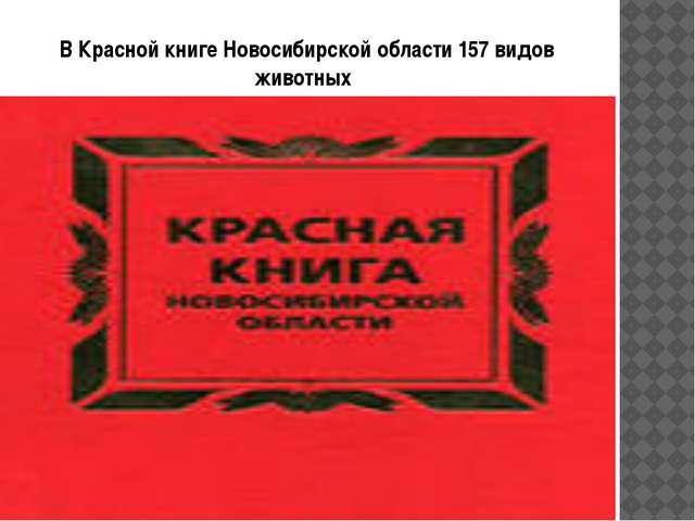 В Красной книге Новосибирской области157 видов животных