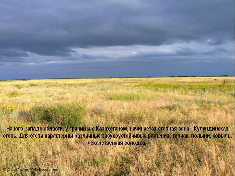 На юго-западе области, у границы с Казахстаном, начинается степная зона - Кул...