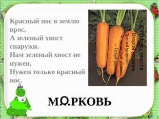 М…РКОВЬ Красный нос в землю врос, А зеленый хвост снаружи. Нам зеленый хвост