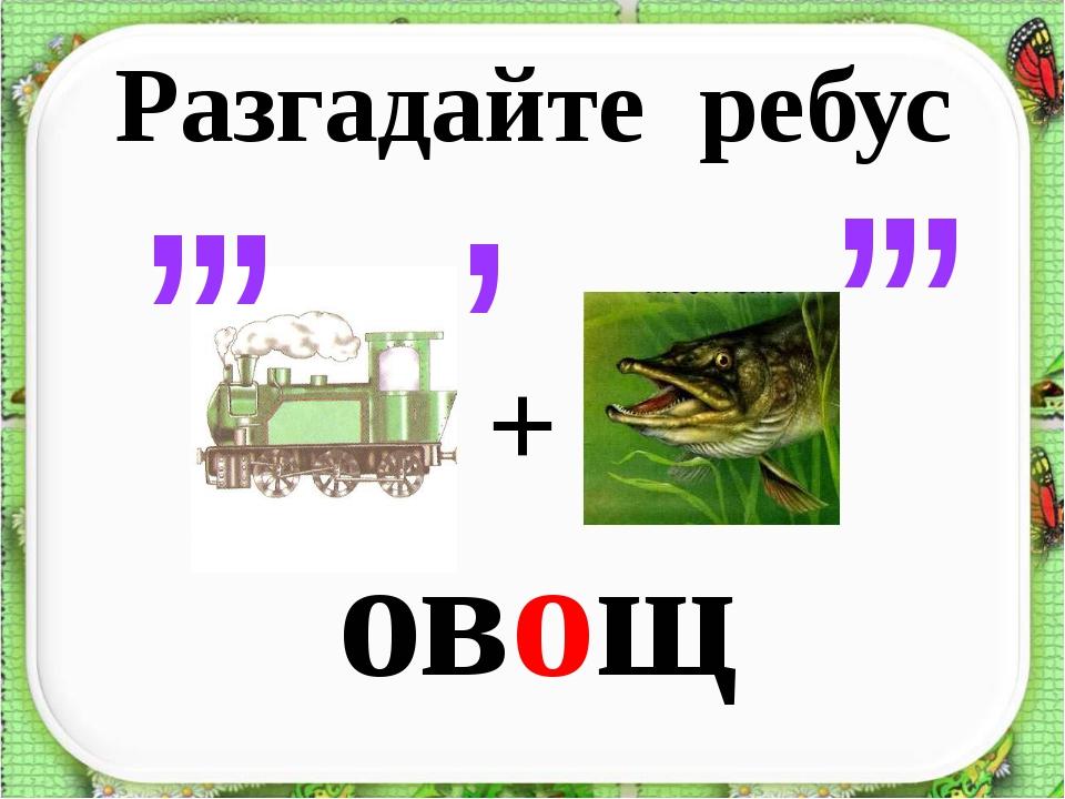 овощ , , , , , , , + Разгадайте ребус