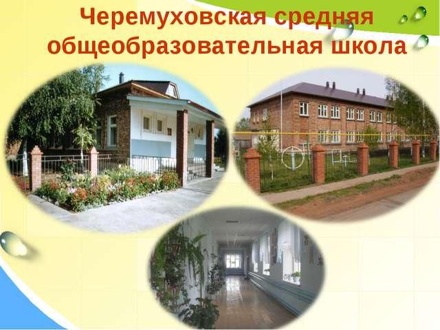 Черемуховская средняя общеобразовательная школа