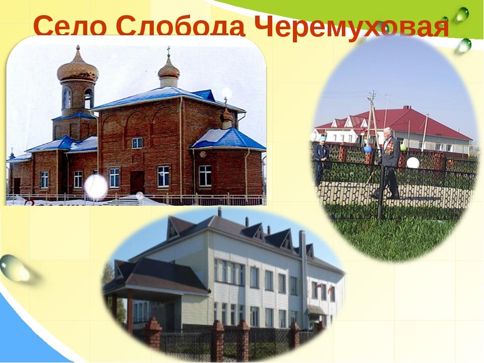 Село Слобода Черемуховая