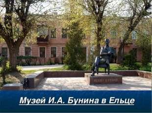 Музей И.А. Бунина в Ельце