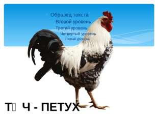 ӘТӘЧ - ПЕТУХ