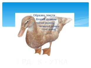 ҮРДӘК - УТКА