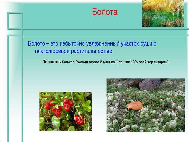 Болота Площадь болот в России около 2 млн.км2 (свыше 10% всей территории) Бол...