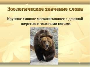 Зоологическое значение слова Крупное хищное млекопитающее с длинной шерстью и