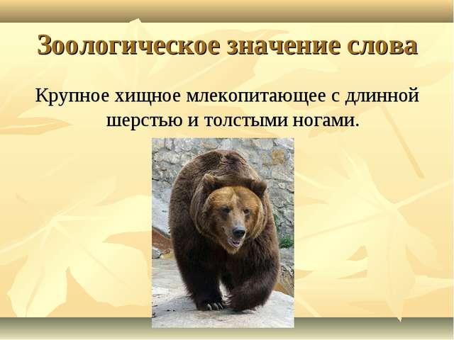 Зоологическое значение слова Крупное хищное млекопитающее с длинной шерстью и...