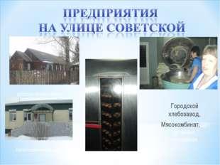 , детская поликлиника налоговая инспекция Городской хлебозавод, Мясокомбинат