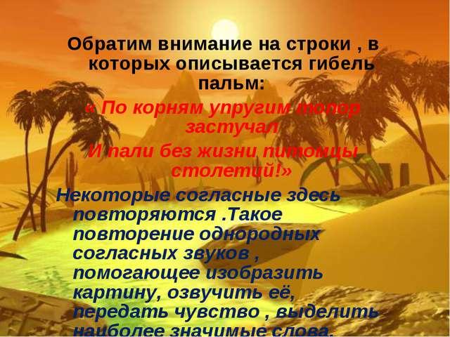 Обратим внимание на строки , в которых описывается гибель пальм: « По корням...