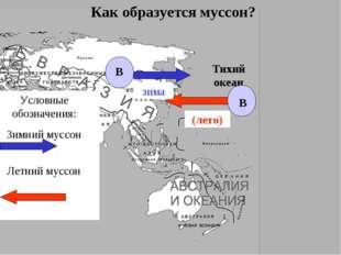 Тихий океан Как образуется муссон? В В Условные обозначения: Зимний муссон Ле