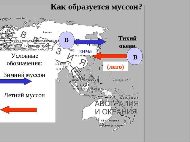 Тихий океан Как образуется муссон? В В Условные обозначения: Зимний муссон Ле...