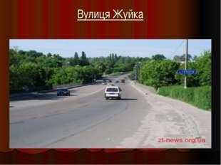 Вулиця Жуйка