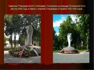 """Памятник """"Плачущий Ангел"""" в Житомире. Установлен на площади Путятинской 23-го"""