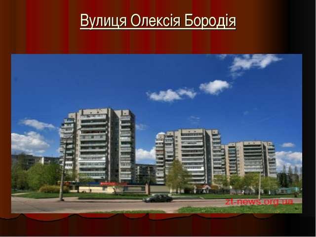 Вулиця Олексія Бородія