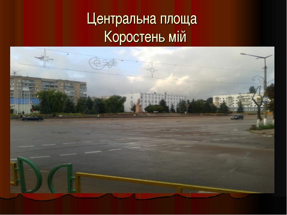 Центральна площа Коростень мій