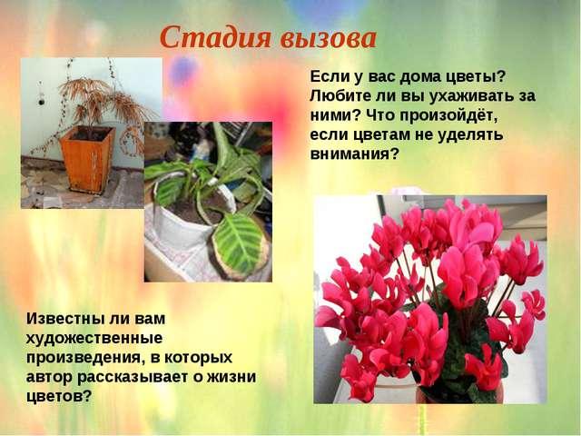 Если у вас дома цветы? Любите ли вы ухаживать за ними? Что произойдёт, если ц...