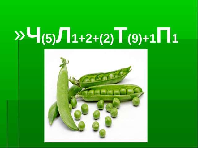 Ч(5)Л1+2+(2)Т(9)+1П1