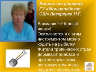 Вопрос от учителя ГУ «Ковыльненская СШ» Зеленко Н.С. Немецкий поэт Фридрих Ши