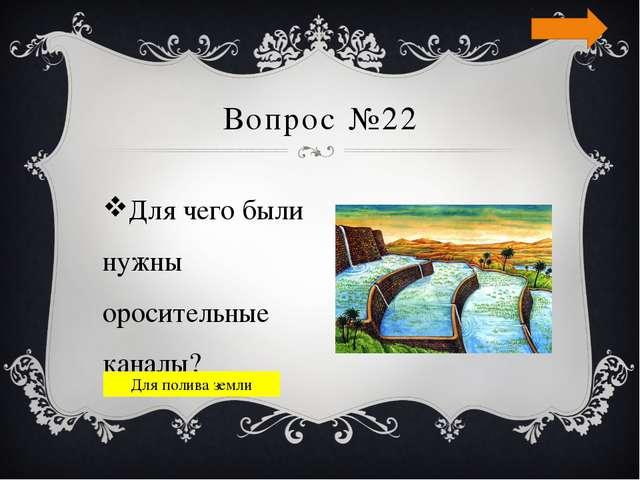 Вопрос №24 Царица Египта, отличающаяся неземной красотой? Нефертити