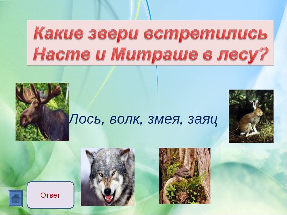 Лось, волк, змея, заяц Ответ