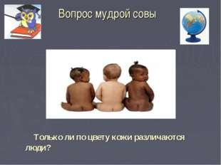 Вопрос мудрой совы Только ли по цвету кожи различаются люди?
