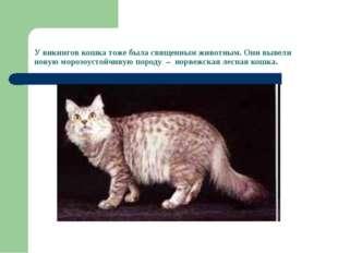 У викингов кошка тоже была священным животным. Они вывели новую морозоустойчи