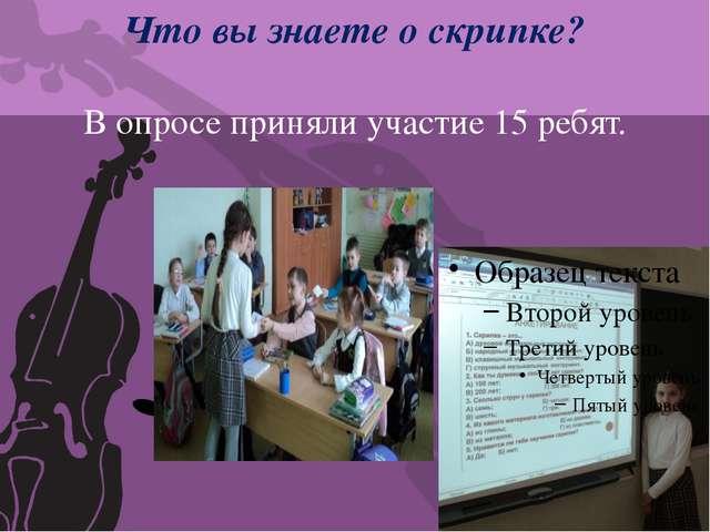 Что вы знаете о скрипке? В опросе приняли участие 15 ребят.