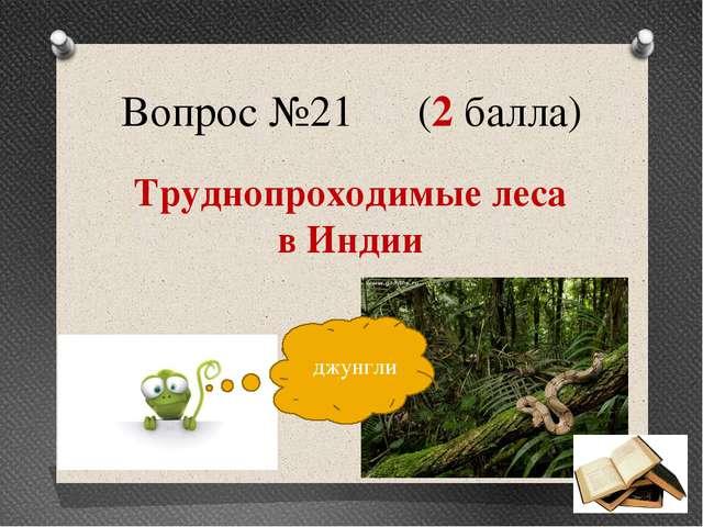 Вопрос №21 (2 балла) Труднопроходимые леса в Индии джунгли