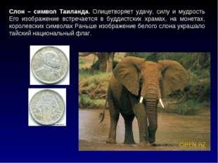 Слон – символ Таиланда. Олицетворяет удачу, силу и мудрость Его изображение в