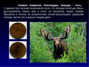 Символ Норвегии, Финляндии, Швеции - лось. С давних пор человек поклонялся л