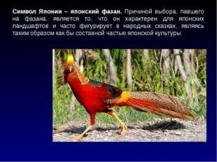 Символ Японии – японский фазан. Причиной выбора, павшего на фазана, является