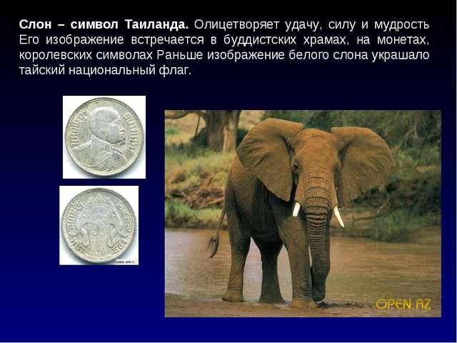 Слон – символ Таиланда. Олицетворяет удачу, силу и мудрость Его изображение в...