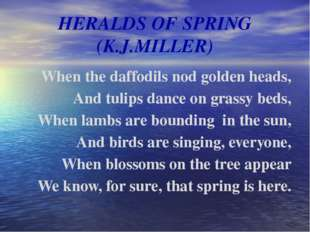 HERALDS OF SPRING (K.J.MILLER) When the daffodils nod golden heads, And tulip