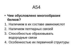 А54 Чем обусловлено многообразие белков? Наличием в их составе аминокислот На